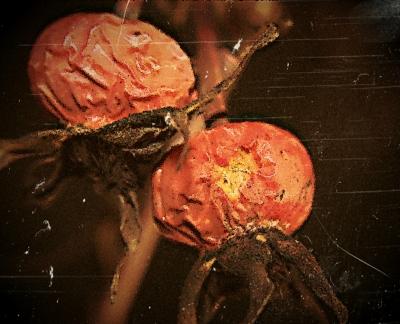 Herbstgemälde 2