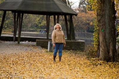 Bläter im Herbst