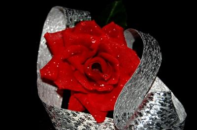 w-rose *kitschig* ;-)