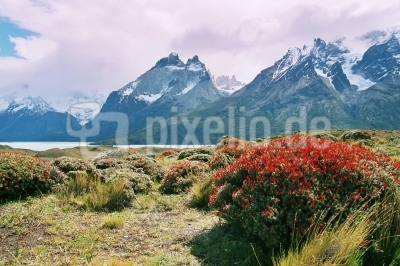 Torres del Paine National Park, Patagonien, Chile