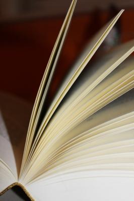 Buchseite 31