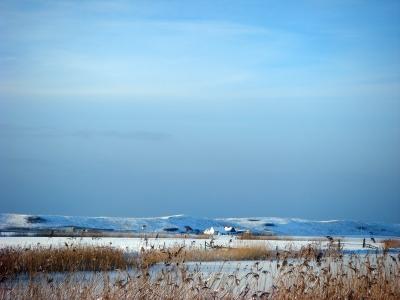 Callantsoog-Dühnen im Winter