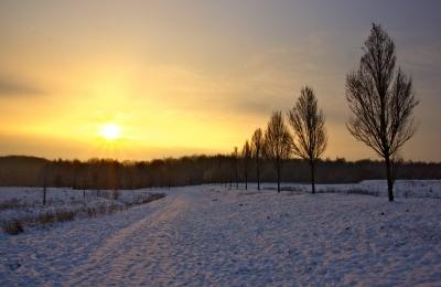 Wintermorgen Sonnenaufgang