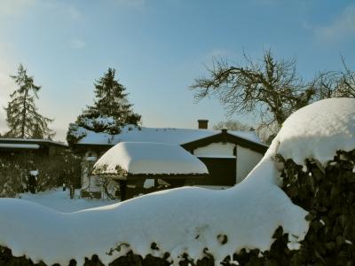 Winterliche Kleingärten