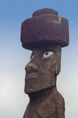 Die sehende Statue