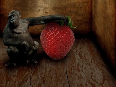 Affenbeere