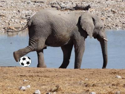 Fußball auf afrikanisch