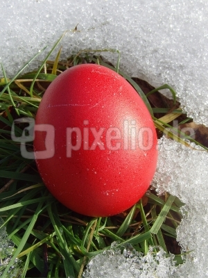 Der Winter geht - der Frühling kommt - und damit Ostern