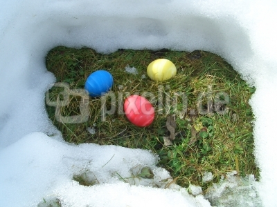 Osternest im Schnee