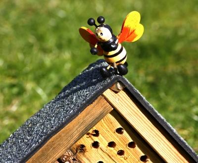 Eigenheim für Wildbienen