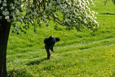Den Frühling geniessen