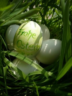 Frohe Ostern im Gras