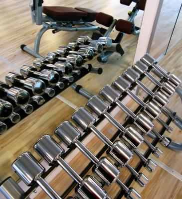 In der Muskelfabrik_1