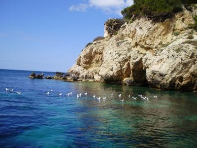 Mallorca Felsenküste-1