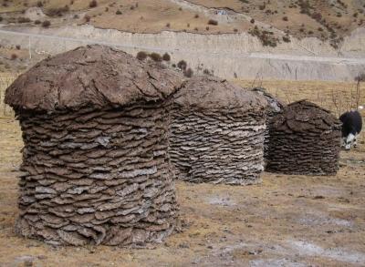 """Tibet - Yakfladen als """"Green Energy"""""""