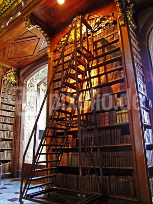 Bücherwürmer - hoch hinaus