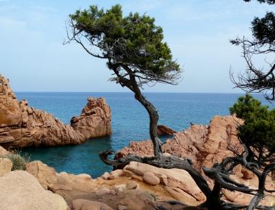 Wilde Küste in Sardinien