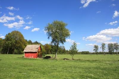 Hütte mit Freiblick 1