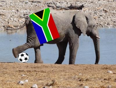 WM-Elefant