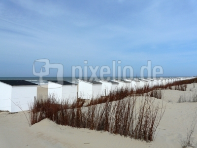 Badestrand auf Texel