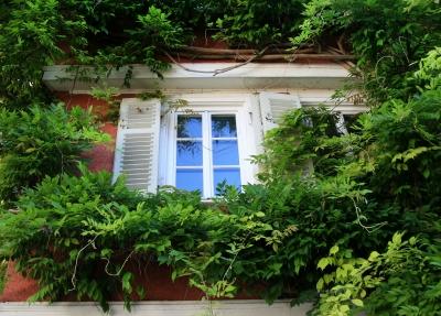Fenster mit romantischer Rahmung