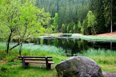 Ruhebank am Buhlbachsee
