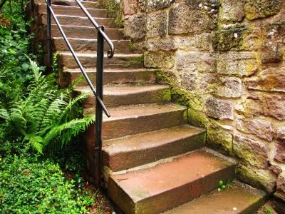 alte Steintreppe mit Farnkraut