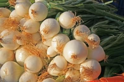 Zwiebeln marktfrisch