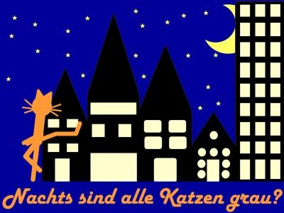 Katze Kittycat Nightlife