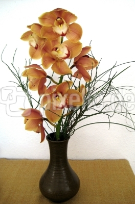 Orchideenzweig in Keramikvase