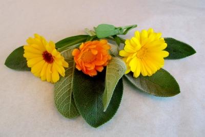 Tee mit Salbei und Ringelblumen