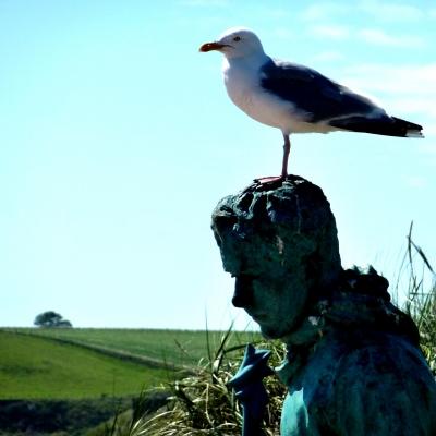 Eine Möve auf einer Statue in Montrose ( Schottland )