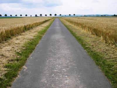 Sauberer Feldweg
