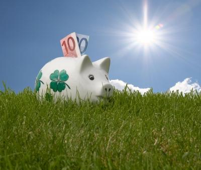 Sparschwein im Grünen mit 30€