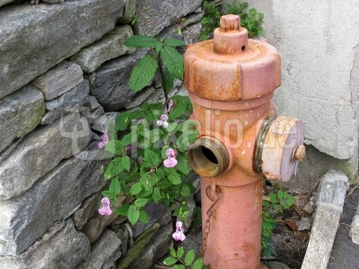 Alter Hydrant