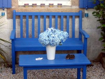 bleu breton