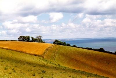 England, Landschaft, Sommer 1998
