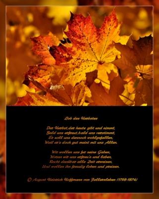 Ode an den Herbst