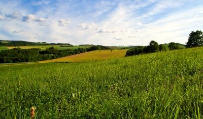 Thüringer Weite