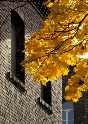 Herbstlaub vor Klinkerfassade