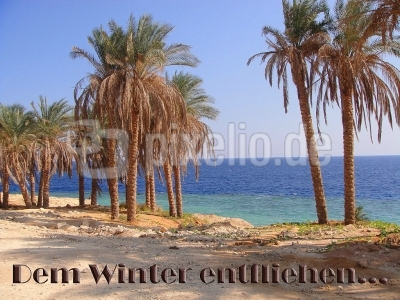 Dem Winter entfliehen.......