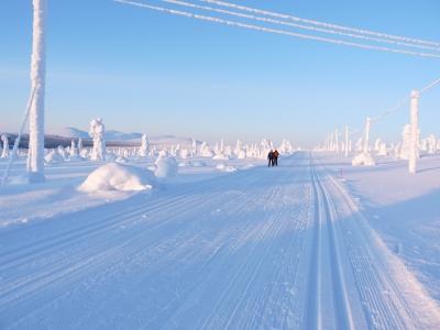 Skilanglauf in der Arktis