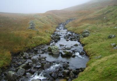 Wasserlauf in den Highlands Morgennebel