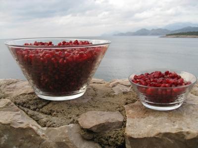 Granatapfelkerne