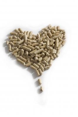 Ein Herz für die Umwelt 2