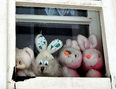 Plüschtiere im Fenster