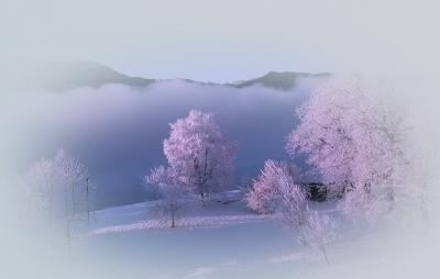 Frostiger Wintertraum