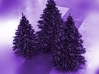 Weihnachts-Modefarbe lila