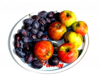 Stilleben mit Äpfel und Pflaumen