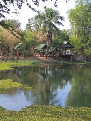 Sai Ngam Park, Phimai, Thailand